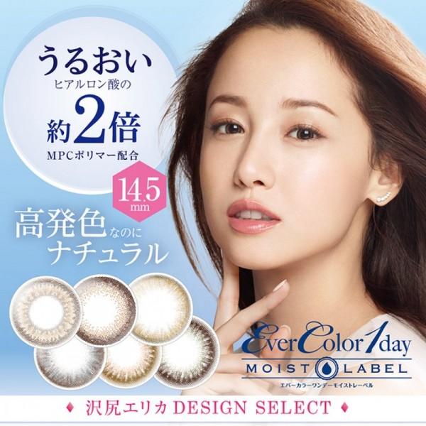 EverColor Moist Label 10片